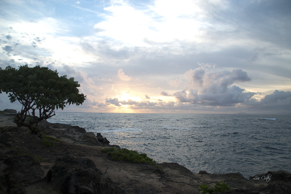 Sunrise at Laie Point